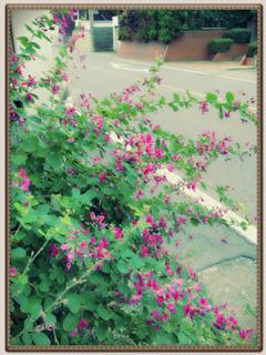 image-20121027205647.png