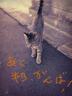image-20130125130517.png