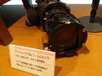 P1134188.JPG